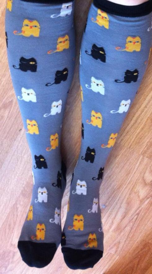 sockcats
