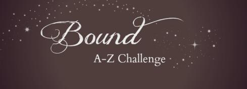 az challenge plain